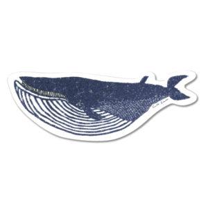 クジラセルローススポンジ
